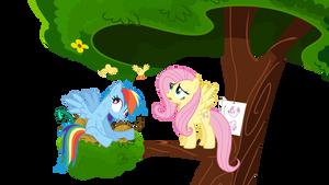 Rainbow Crash N Fluttershy