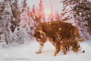 Tiger Babys First Snow - Animation