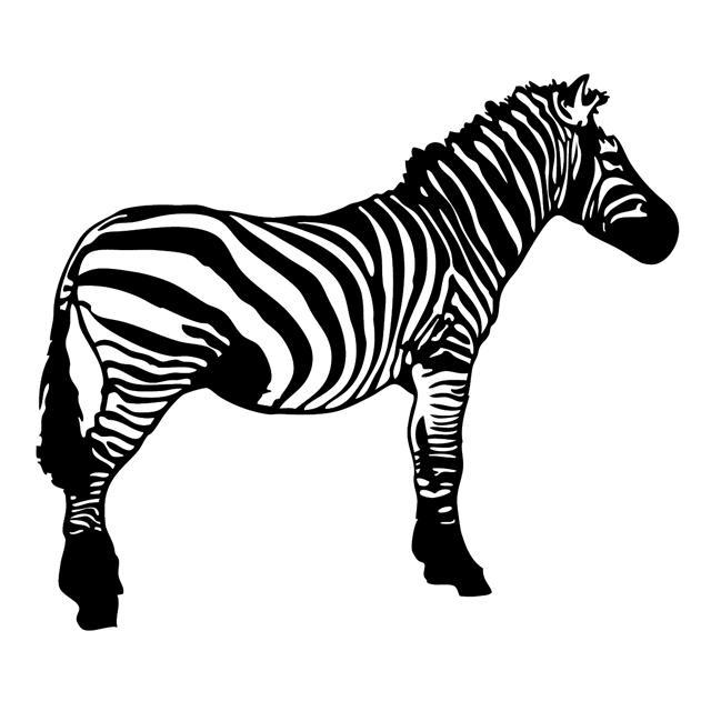 Zebra Vector Resource by Zebra Vector Png