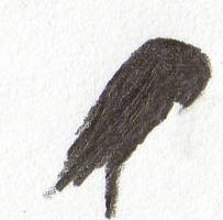 Mindscape. Owl