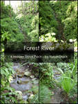 Forest River Stock Pack