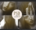 PSD 35 - Gold Dragon