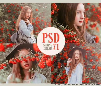 PSD 71 - Spring Dream