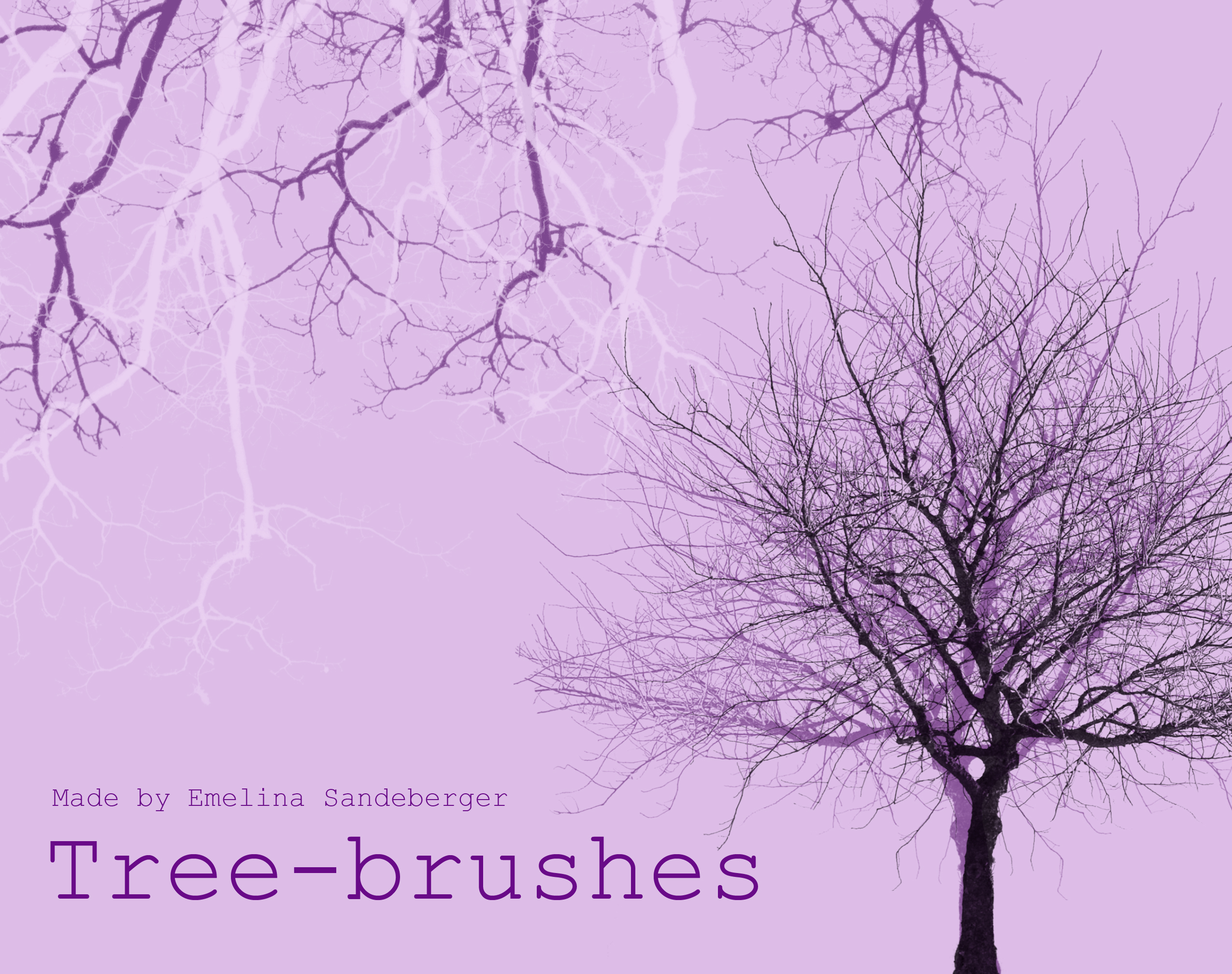 TREES AND BRANCHES - great brushes for photoshop