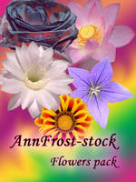 Flowers stock pack by AnnFrost-stock