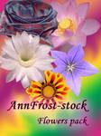 Flowers stock pack