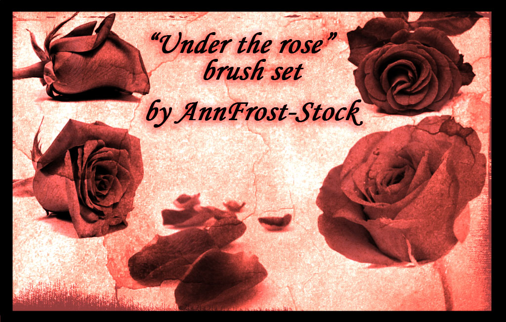 Under the rose brush set
