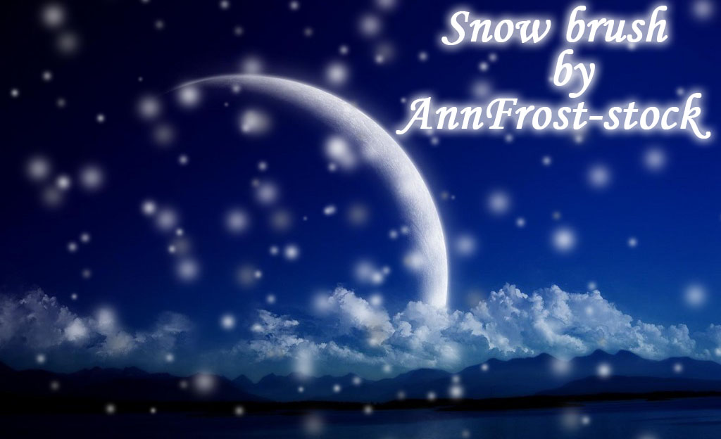 Snow brush