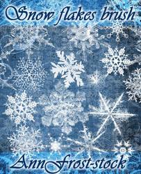 Snow flakes brush