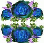 Flowers 80 9917941611