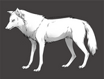 Free wolf lineart for Photoshop + MS Paint