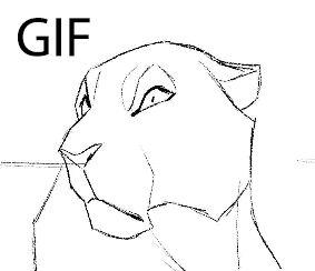 Leopard animation