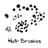 Hair Brushes by zoephoenix