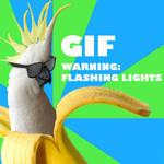 Banana Parrot (GIF)