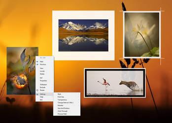 BFrame [ Pictures Frame Gadget ]