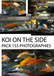 PART II koi fish - on the side by creationtakesun