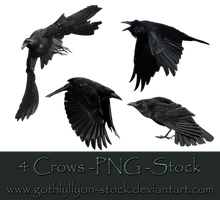 Crows-Stock-by-GothLyllyOn-Stock by GothLyllyOn-Sotck