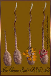 The Witch's Brooms