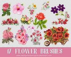 Flower Brushes - Photoshop by sweetpoisonresources