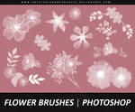 Flower Brushes 002 - Photoshop
