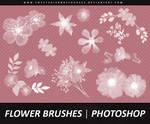 Flower Brushes 002 - Photoshop