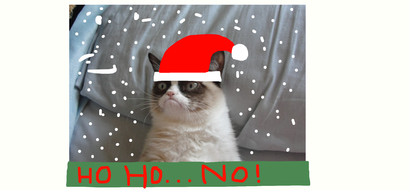MERRY CHRISTMAS GRUMPY CAT! by BNSFRULES on DeviantArt