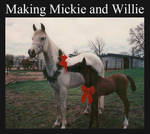 Making Mickie and Willie Part 1