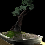 07summer Maya project - bonsai by defmunky