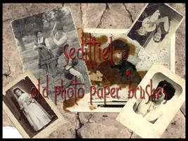 Old photo paper brushes by seditliel