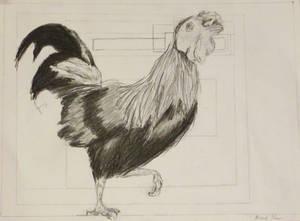 rooster sketch