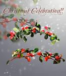 Christmas I