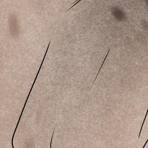 Roan Brush by TigressDesign
