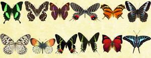 Windows Icons - Butterflies Set 7