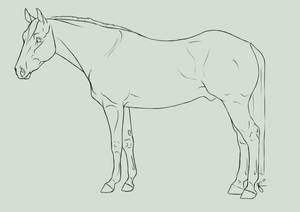 FREE Quarter Horse Lines