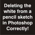 Prepare pencil sketch by fake173