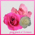 Png Stock N3 Roses by lo-scrigno-di-connie