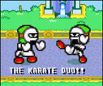 We are the Karate Duo.