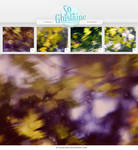 Textures - Autumn