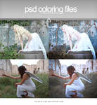 PSD coloring - Cold colors