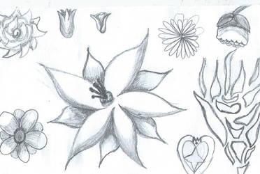Flowers and heart by AnimeKatieKitty