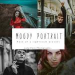 Moody portrait - Lightroom Presets