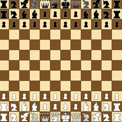 Large board chess (12x12 and 16x16 with replay)