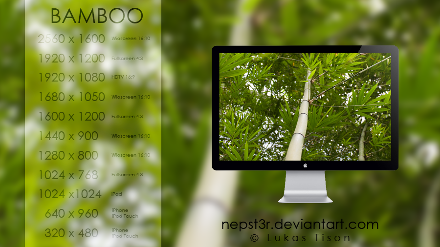 Bamboo wallpapers pack by nepst3r