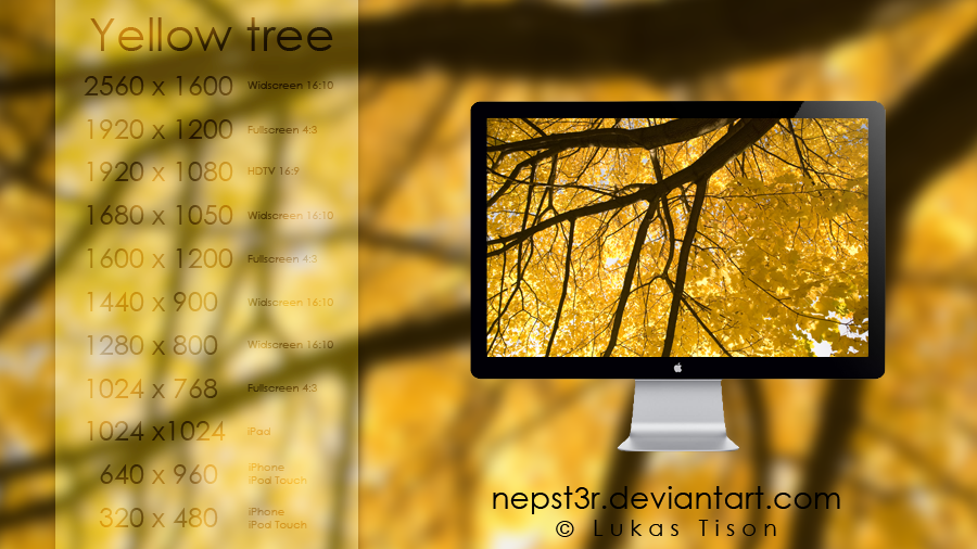 Yellow tree wallpapers pack by nepst3r