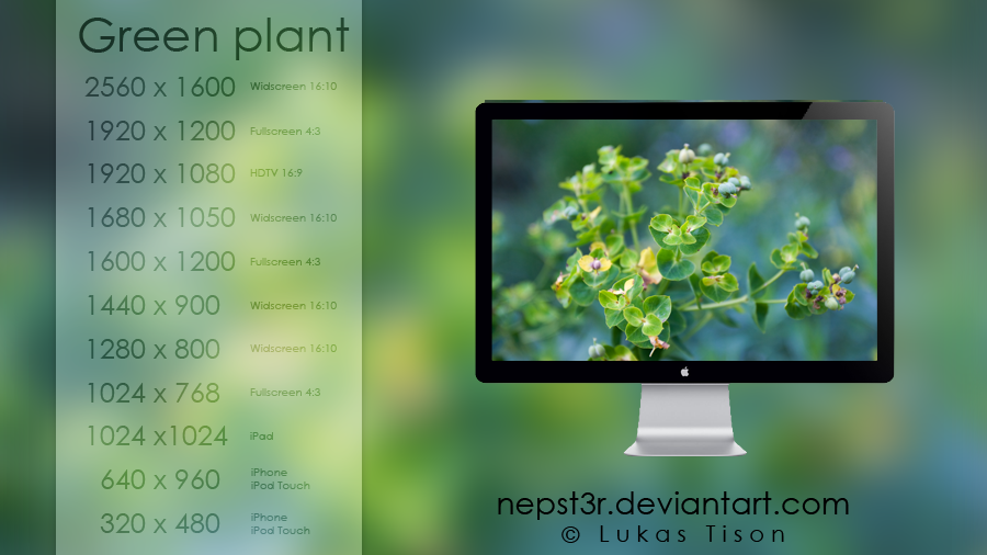 Green plant wallpapers pack by nepst3r
