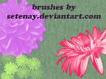 photoshop_brushes_5_Flowers