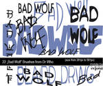 Bad Wolf Brushes