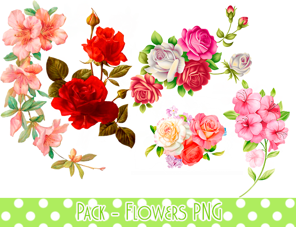 Pack - Flowers PNG #1 by MinmeyPrints on DeviantArt