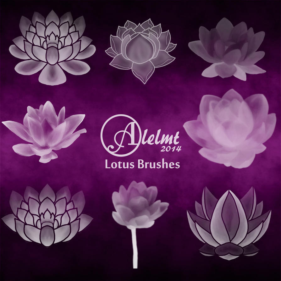 Lotus Photoshop Brushes By Alelmt On Deviantart