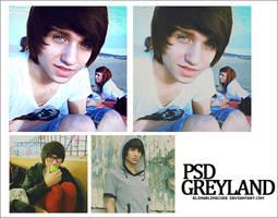 PSD Greyland by blingblingcore
